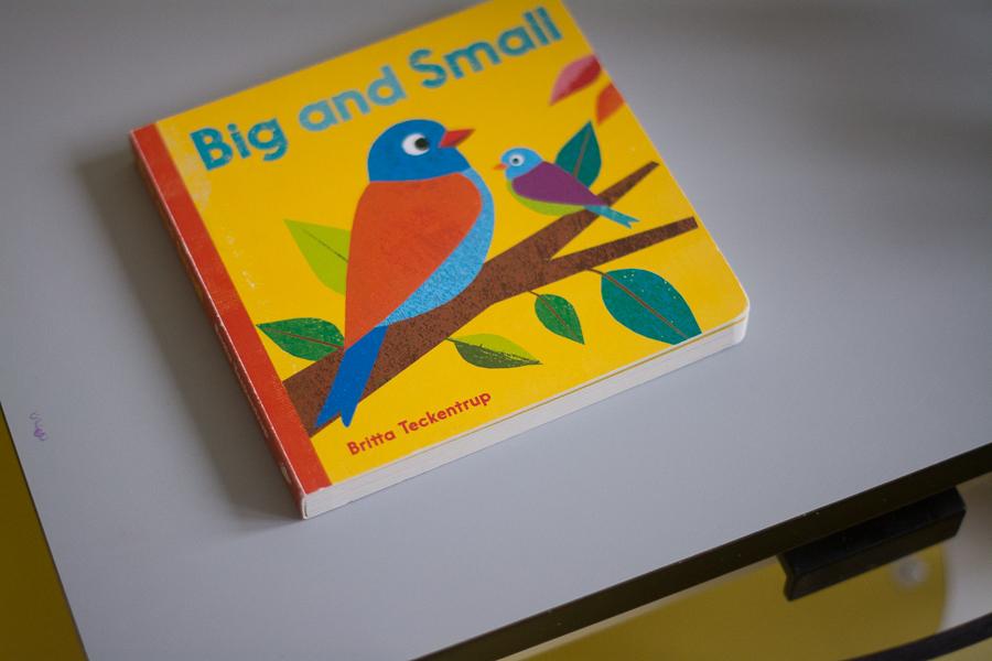 Bardzo ładna kartonowa książeczka