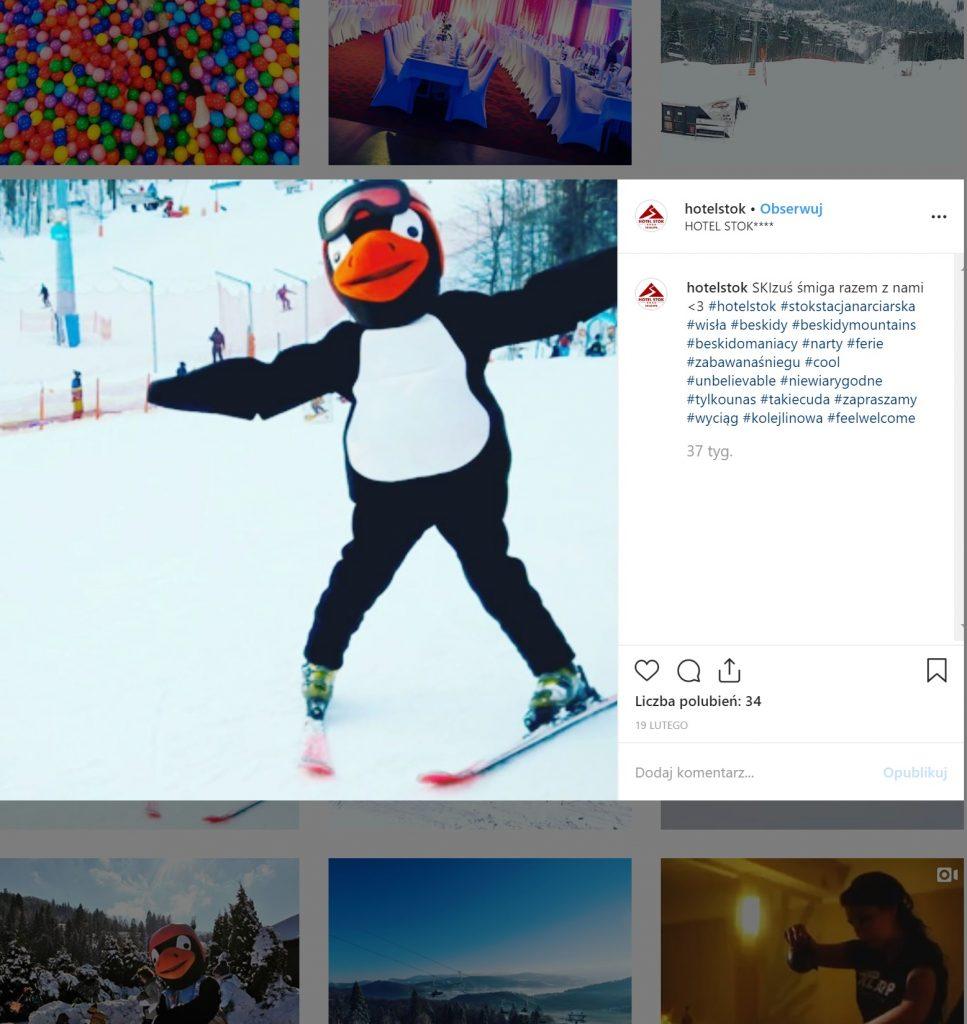 ferie zimowe w hotelu Stok, atrakcje dla dzieci