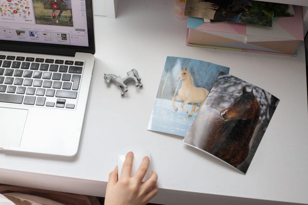 lapbook o koniach