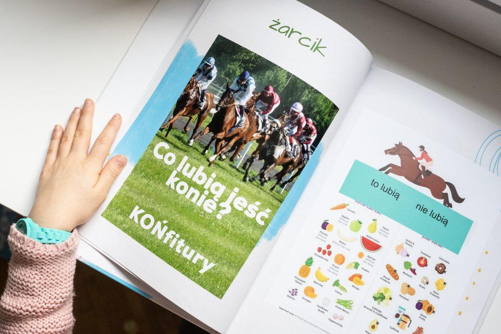 lapbooki w edukacji domowej