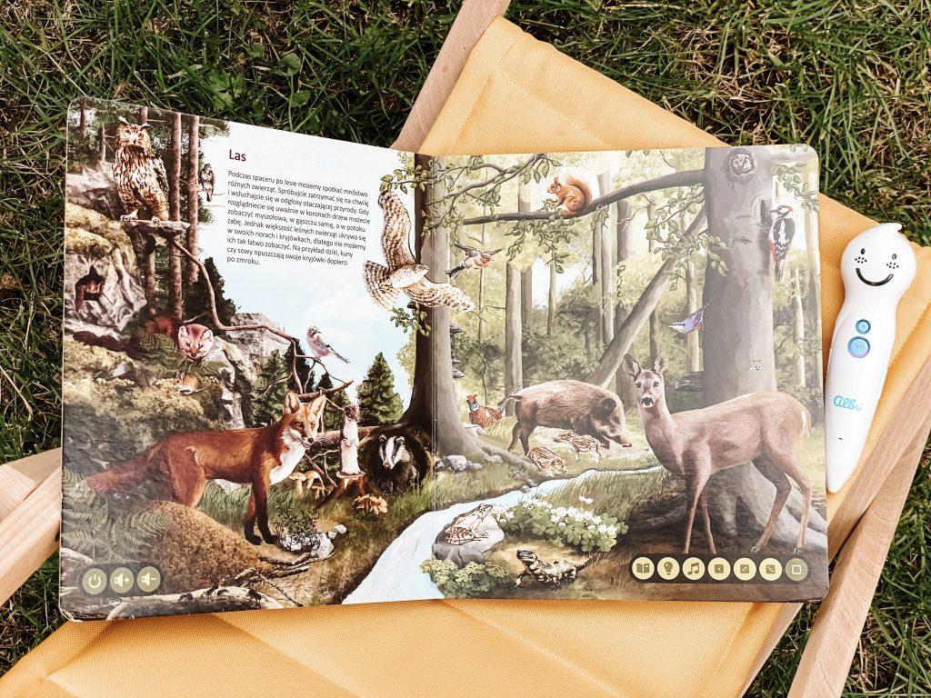 strona z książki o dinozaurach